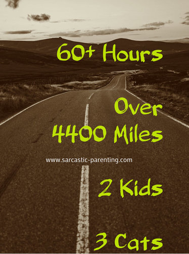 I survived a 13 day road trip WITH KIDS