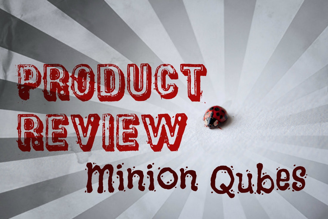 Surprise Qubes Review!